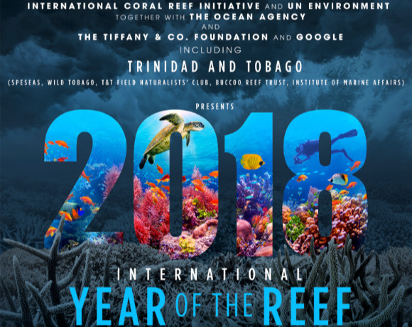 International Year of the Reef