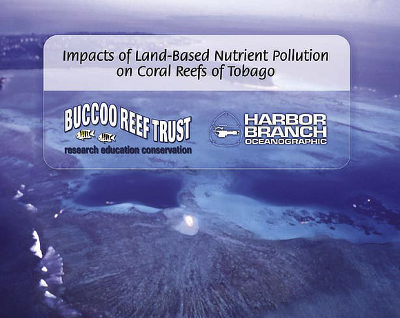 Download: Impacts of Land-Based Nutrient Pollution on Coral Reefs of Tobago