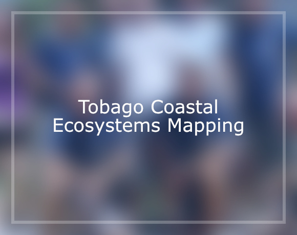Tobago Coastal Ecosystems Mapping